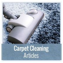 Carpet Cleaning Articles