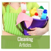 Cleaning Articles